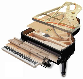 piano aprrt piano anatomy sterling piano tuning Upright Piano at panicattacktreatment.co